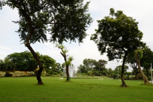 Garden in Kolkata